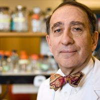 Stuart Levy, Antibiotic Resistance Researcher, Dies