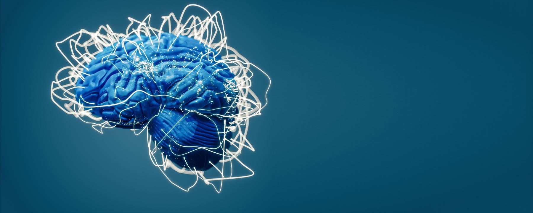 The Cerebellum's Secrets: A Profile of Kamran Khodakhah