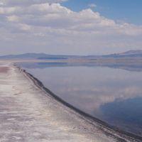 Arsenic-Resistant Nematodes Found in Mono Lake