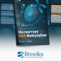挖掘外膜内组:用于DNA甲基化的微阵列