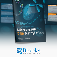 Mining the Epigenome: Microarrays for DNA Methylation