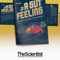不仅仅是一种肠道的感觉:微生物群对情绪和行为的影响