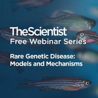 Rare Genetic Disease: Models and Mechanisms