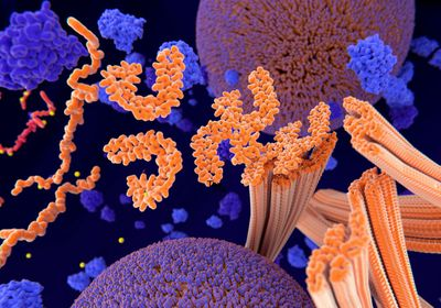 Tau Linked to RNA Splicing Errors in Flies
