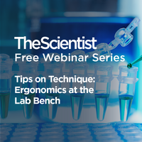 Tips on Technique: Ergonomics at the Lab Bench