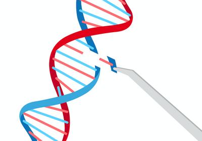 Deafness Gene <em>GJB2</em> Edited in Human Eggs