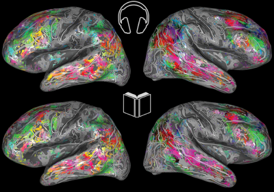 The Brain Interprets Spoken and Written Language the Same Way