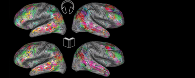 The Brain Interprets Spoken and Written Language the Same Way