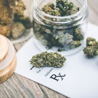 Value of Medical Marijuana for Mental Health Questioned