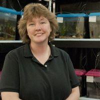 Fish Biologist Victoria Braithwaite Dies