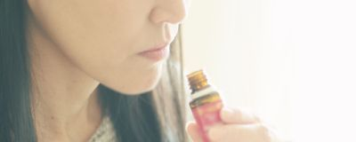 Smell May Be Possible Without Olfactory Bulbs