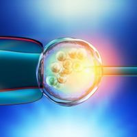 Selecting Embryos for IQ, Height Not Currently Practical: Study