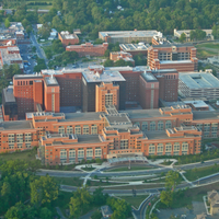 NIH Considering New Recommendations on Sexual Harassment Policies