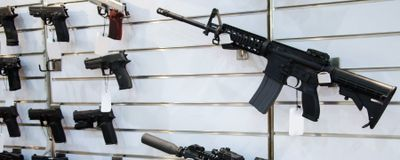 Spending Bill Boosts US Science Budgets, Unlocks Gun Research
