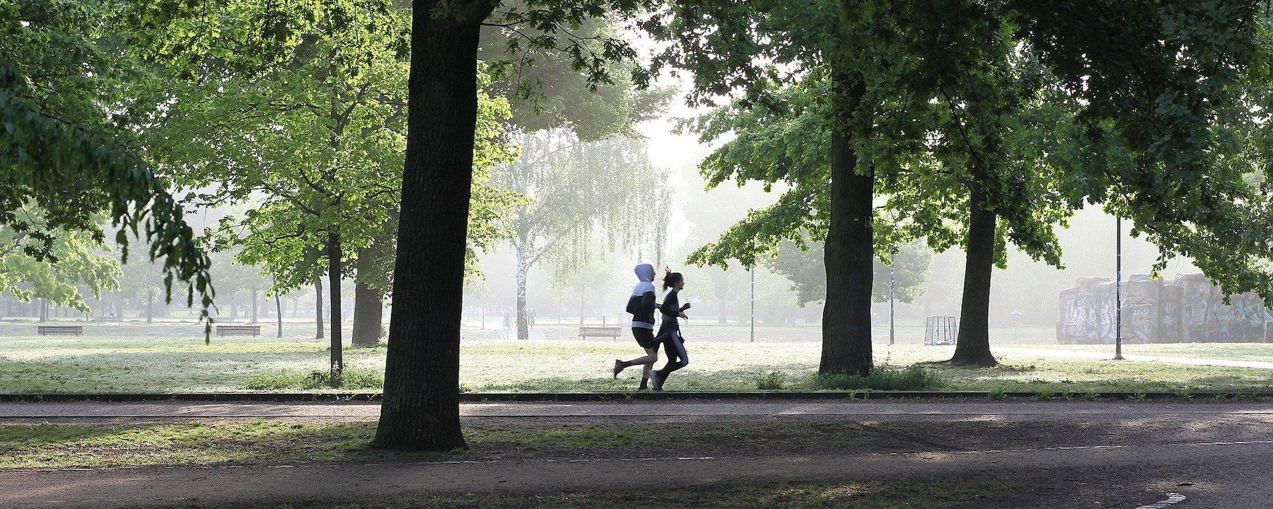 Can Exercise Explain the Health Benefits of Natural Environments?