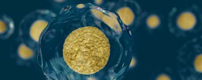 The Advances that Will Shape Life Sciences in the 2020s