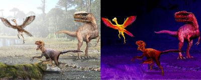 Image of the Day: Shrinking Dinosaurs