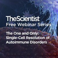 The One and Only: Single-Cell Resolution of Autoimmune Disorders
