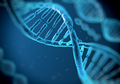 Novel DNA-Sensing Pathway Found in Human Cells, Absent in Mice