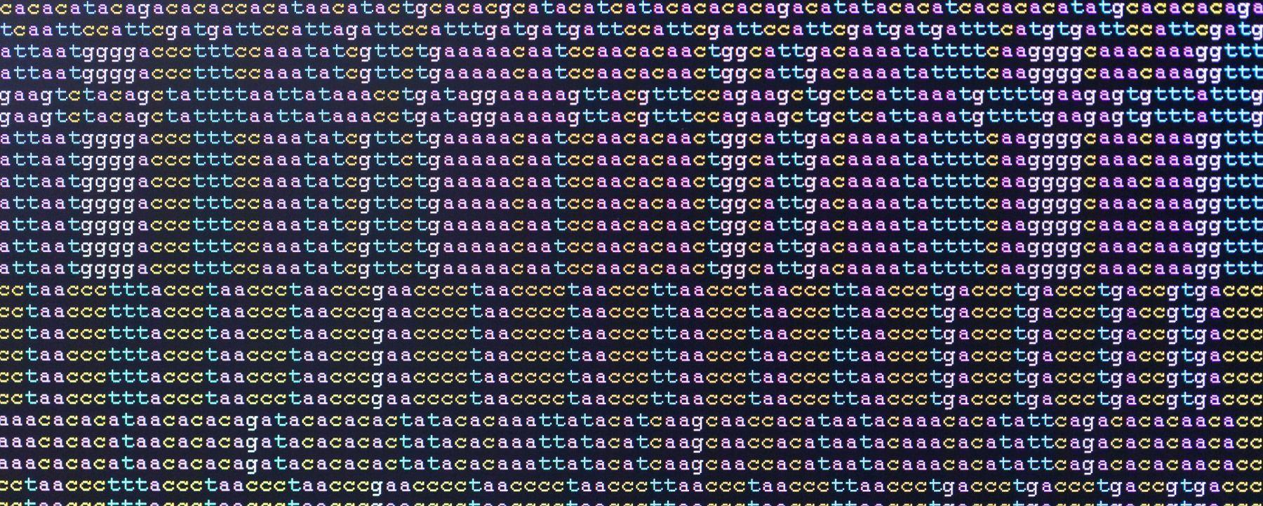 Remnants of Extinct Hominin Species Found in West African Genomes