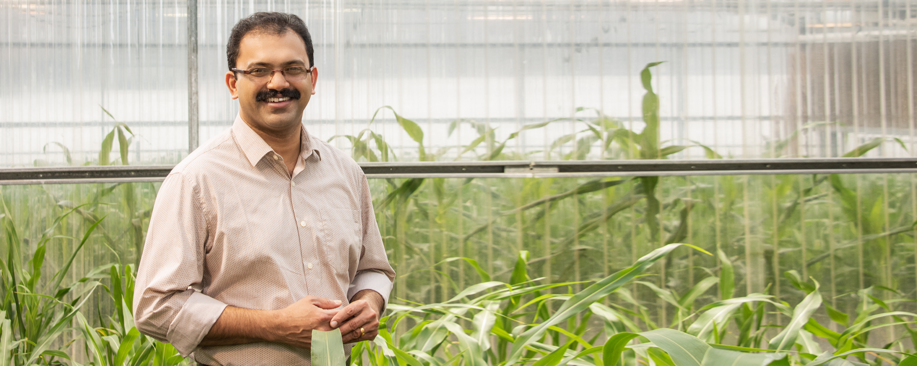 Joe Louis Studies the Molecular Battles Between Plants and Insects