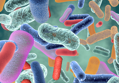 Artificial Intelligence Discovers Potent Antibiotic