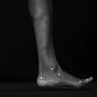 Image of the Day: Foot Biomechanics