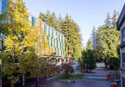 UC Santa Cruz Fires Graduate Students Taking Part in Strike