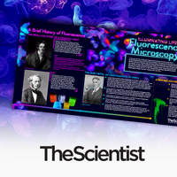 Illuminating Life: Fluorescence Microscopy