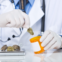 Opinion: We Still Lack Evidence that Cannabis Treats Cancer Pain
