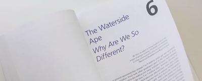 Aquatic Apes?