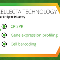 Cellecta: Simplified Gene Functional Analysis