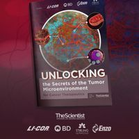 Unlocking the Secrets of the Tumor Microenvironment