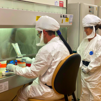 Scientists Around the Globe Pivot Their Research to SARS-CoV-2