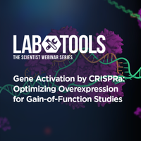 Gene Activation by CRISPRa: Optimizing Overexpression for Gain-of-Function Studies