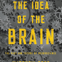 Book Excerpt from <em>The Idea of the Brain</em>