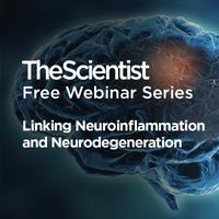 Linking Neuroinflammation and Neurodegeneration