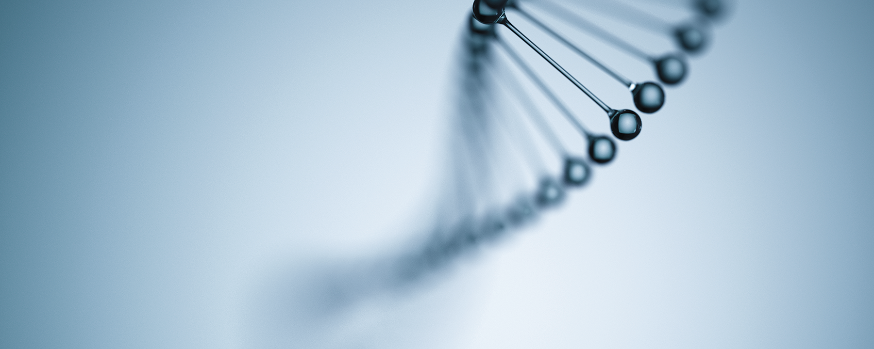 Left-Handed DNA Has a Biological Role Within a Dynamic Genetic Code