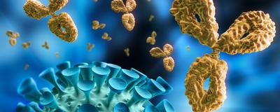 COVID-19 Vaccine Researchers Mindful of Immune Enhancement
