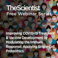 Improving COVID-19 Treatment & Vaccine Development by Modulating the Immune Response: Applying Single-Cell Proteomics