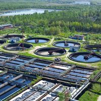 Researchers Seek a Simple, Rapid Test for SARS-CoV-2 in Sewage