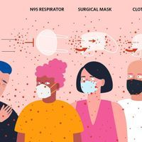 Infographic: What We Know About How Masks Can Slow Disease Spread