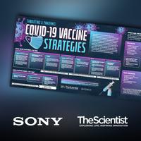 挫败大流行:Covid-19疫苗策略