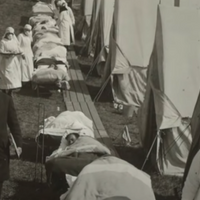 Recalling the 1918 Pandemic
