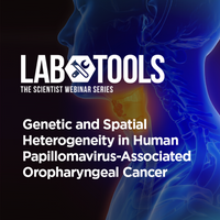 Genetic and Spatial Heterogeneity in Human Papillomavirus-Associated Oropharyngeal Cancer