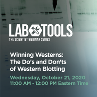 October 21, 2020 - Winning Westerns: The Do's and Don'ts of Western Blotting