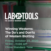 October 23, 2020 - Winning Westerns: The Do's and Don'ts of Western Blotting