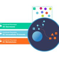 利用同工异构体预测和克服抗性单细胞内蛋白质组学和代谢组学分析工具