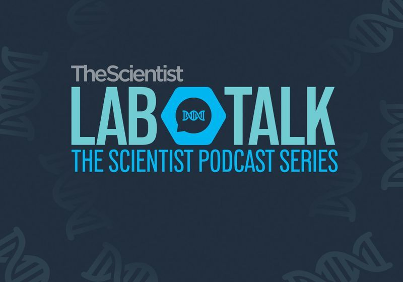 The Scientist's LabTalk Podcast - Episode 1