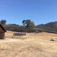 Field Research Sites Damaged as Fires Ravage West Coast